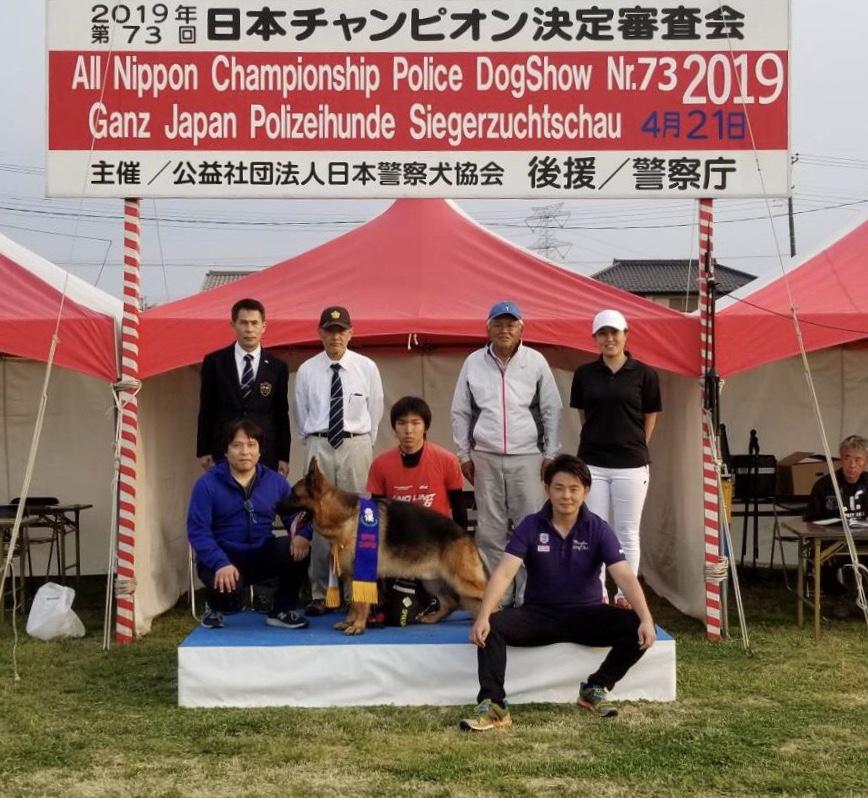 日本チャンピオン決定審査会